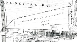 A 1904 map showing the Quaker and African American cemeteries.