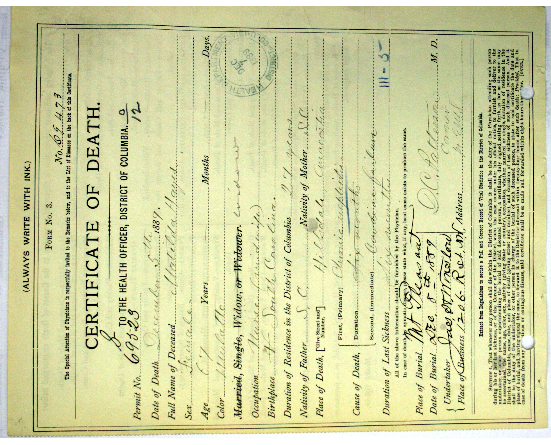 THE NAMES: FIND YOUR ANCESTORS! | The Walter Pierce Park